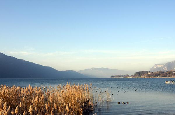 Mission AAPPMA : pêche et préservation du domaine de pêche à Aix-les-Bains